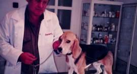 Ludzie pozytywnie zakręceni – Jak można nie kochać zwierząt?